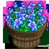 Bugloss Bushel-icon