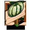 Dumpling Squash Mastery Sign-icon