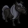 Black Pony-icon