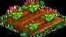 Garnet Poppy 33
