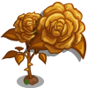 Golden Rose-icon