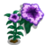 Purple Petunia-icon