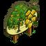 Indian Laurel Tree