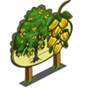 Indian Laurel Tree Mastery Sign-icon