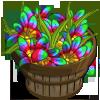 Iris Rainbow Bushel-icon