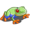 Red Eyed Frog-icon