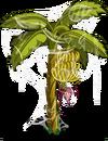 Banana4-icon