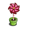 Rose Pinwheel-icon
