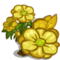 Yellow Buttercup Full Bloom-icon