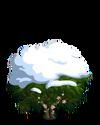 Cocoa7-icon