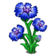 Cornflower (Quest)-icon
