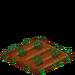 Gladiolus 33