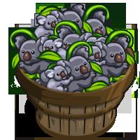 Koalas (crop) Bushel-icon