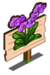 Purple Orchid Mastery Sign-icon