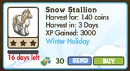 Snow Stallion Market Info