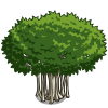 Banyan Tree (decoration)-icon