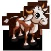 Irish Moiled Bull Calf-icon