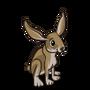 Jackrabbit-icon