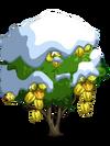 Starfruit8-icon