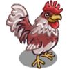 Ameraucanas Rooster-icon