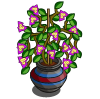 Bougainvillea Pot-icon
