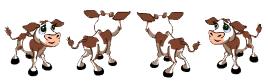 Calf Rotate