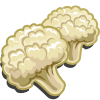 Cauliflower-icon