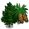 Norway Spruce Tree-icon
