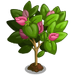 Spring Bud Tree-icon