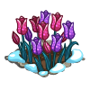 Tulips Flower Bed-icon