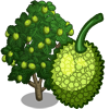 Breadfruit Tree-icon