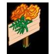 Orange Marigold Mastery Sign-icon