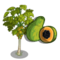 Papaya Tree-icon