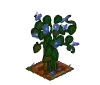 Arquivo:Wither Bunch Morning Glory-icon.png