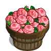 English Rose Bushel-icon