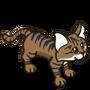 Sand Cat-icon