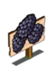 Black Berry Mastery Sign-icon