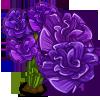 Purple Carnation Full Bloom-icon