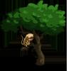 Pygmy Marmosets-icon