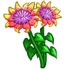 Blanket Flower-icon