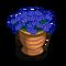 Cornflower Pot-icon