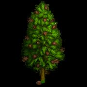 Mountain Pine Tree-icon