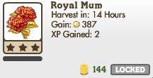 Royal Mum Market Info