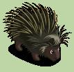 Stachelschwein-icon