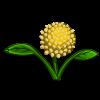 Yoga Flower-icon