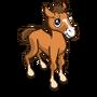 Autumn Foal-icon