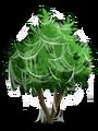 Avocado Tree4-icon.png