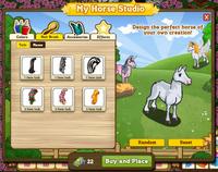 My Horse Studio Inside