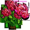 Waratah Bloom-icon