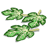 Fig Leaves-icon